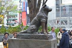 Hachiko Photos libres de droits