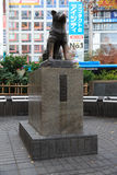 Hachiko died on March 8, 1935, and was found on a street in Shib. TOKYO - DECEMBER 11: Hachiko at Tokyo's Shibuya railroad station. on December 11, 2013 royalty free stock photography
