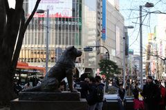 Hachiko雕象那` s著名为它的忠诚 免版税图库摄影