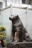 Hachiko statue Stock Photography