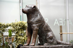 Hachiko statue. Statue of a dog named Hachiko who waited for his master until his death, featured in a film with the same name stock image