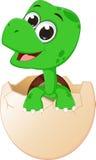 Hachure mignonne de tortues de bébé illustration stock