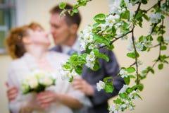 Hacia fuera-de-foco de novia y del novio Imagen de archivo