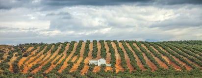 Hacienda, Andalucia, Spain royalty free stock photos