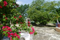 Hacienda finca rancho Mexico Merida farm colonial Holiday spa yucatan Stock Photos