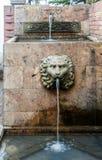 Hacienda principale Santa Barbara Bogota Colombie de lion image stock