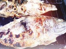 Haciendo pescados en un Bbq ase a la parilla la parrilla sobre el carbón caliente Ciérrese encima de tiro foto de archivo