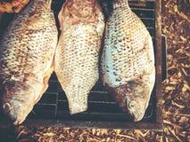 Haciendo pescados en un Bbq ase a la parilla la parrilla sobre el carbón caliente Ciérrese encima de tiro imagen de archivo