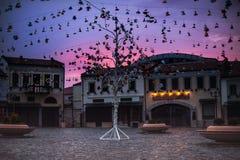 Haciendo turismo en Korca, bazar viejo del otomano cerca Fotografía de archivo libre de regalías