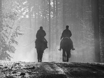 Hack. Two men riding horses in the forest Royalty Free Stock Photos