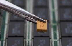 Hackaapelsinkondensator fotografering för bildbyråer
