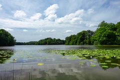 Hackeberga的湖在瑞典 库存照片