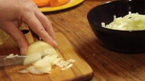 Hacken Sie die Zwiebel mit einem Messer stock video