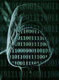 hacker Imagens de Stock Royalty Free