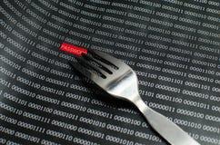 Hacker do conceito da segurança da senha do Internet Foto de Stock Royalty Free
