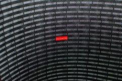 Hacker do conceito da segurança da senha do Internet Imagem de Stock