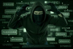 Hacker looking for internet information Stock Images