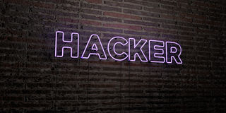 HACKER -Realistic Neon Sign on Brick Wall background - 3D rendered royalty free stock image Stock Photography