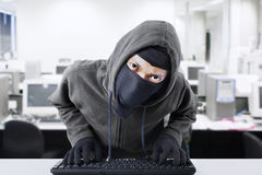 Hacker stealing business data at office Royalty Free Stock Photo