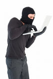 Hacker using laptop to steal identity Royalty Free Stock Images