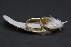 hackle χτυπά το γάμο Στοκ Εικόνες