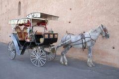 Hackneypaard van Meknes vervoer Stock Foto's