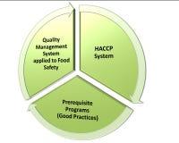 Hacp-qms gmp und Lebensmittelsicherheitsprogramm Lizenzfreies Stockfoto
