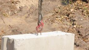 Haczyk żuraw z betonem zbiory wideo