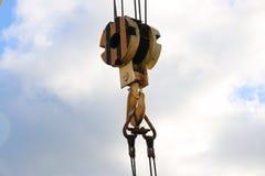 Haczyka kętnara duży żuraw Zdjęcie Stock
