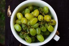 Taste the grapes! royalty free stock photo
