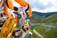Hada και το κρανίο αγελάδων στο Θιβέτ Στοκ φωτογραφίες με δικαίωμα ελεύθερης χρήσης