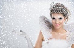 Hada del invierno Imagen de archivo libre de regalías