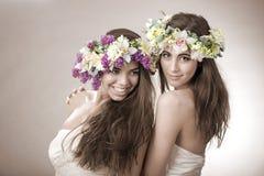 Hada hermosa de la primavera dos, divertida, símbolo de la amistad Foto de archivo libre de regalías