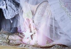 hada rosada hermosa del ballet de la danza de la moda del estilo del equipo del armario del guardarropa Fotografía de archivo