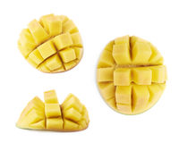 Hadgehog de fruit de mangue d'isolement Photographie stock libre de droits