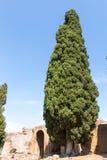 Hadrian's Villa, the Roman Emperor's 'Villa,Tivoli, outside of Rome, Italy, Europe Royalty Free Stock Photos