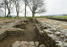Hadrian`s Wall at Birdoswald, England Stock Image