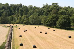 Hadrian's Wall and Farmland. Stock Photo