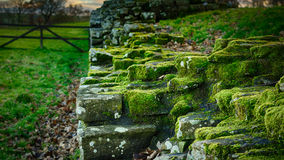 Hadrian`s Wall Royalty Free Stock Photography