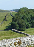 Hadrian's Wall near Housesteads. Hadrian's Wall seen from the ruins of Housesteads Fort Royalty Free Stock Photography