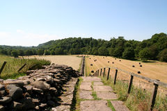 Hadrian's Wall. Stock Images