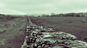 Hadrian's Wall at Upper Denton Stock Photography