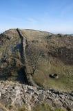 Hadrians墙壁美国梧桐空白 免版税库存照片