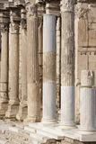 在Hadrians图书馆的离子专栏在雅典 希腊 图库摄影