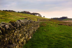 Hadrians wall Royalty Free Stock Photography