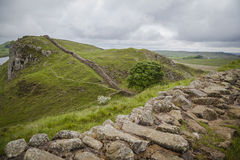 Hadrians Wall. Green meadows and hills along Hadrian's Wall Stock Photos