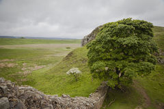 Hadrians Wall. Green meadows and hills along Hadrian's Wall Royalty Free Stock Photography