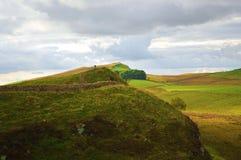 Hadrians Wall Northumberland Stock Image