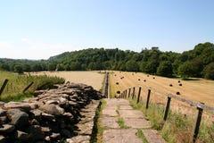 Hadrians Wand Stockbilder
