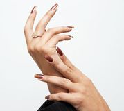 Hads with manicure Royalty Free Stock Image